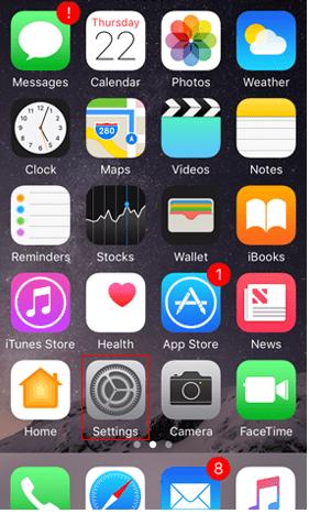 setting in iphone